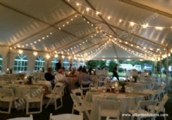 Globe String Light for Party Marquee Tent
